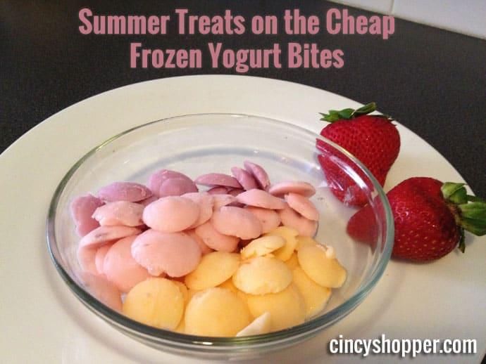 Frozen Yogurt Bites Recipe - Easy healthy treats for the kids.