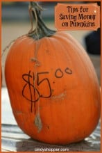 7 Tips for Saving Money on Pumpkins