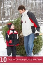 10 Tips for Choosing a Christmas Tree