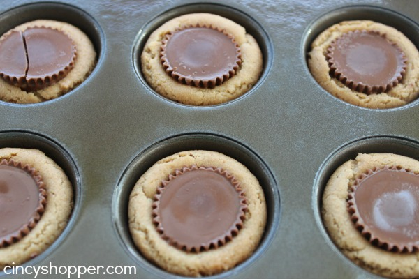 Reese's Cookies Great recipe all year long. They make for a great Christmas cookie too! Everyone loves them.