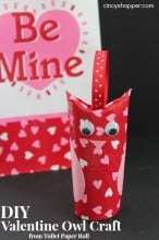 DIY Valentine Owl Craft from Toilet Paper Roll