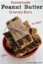 Homemade Peanut Butter Granola Bars
