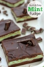 Mint Fudge Recipe