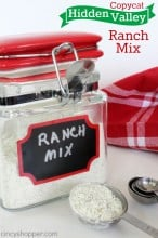 Copycat Hidden Valley Ranch Mix Recipe