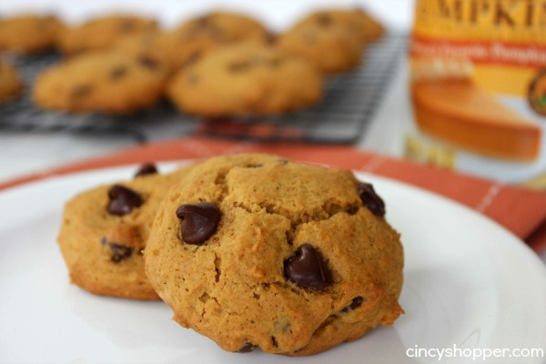 Pumpkin Chocolate Chip Cookies Recipe 5