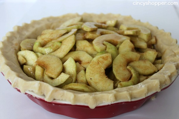 Dutch Apple Pie Recipe 5