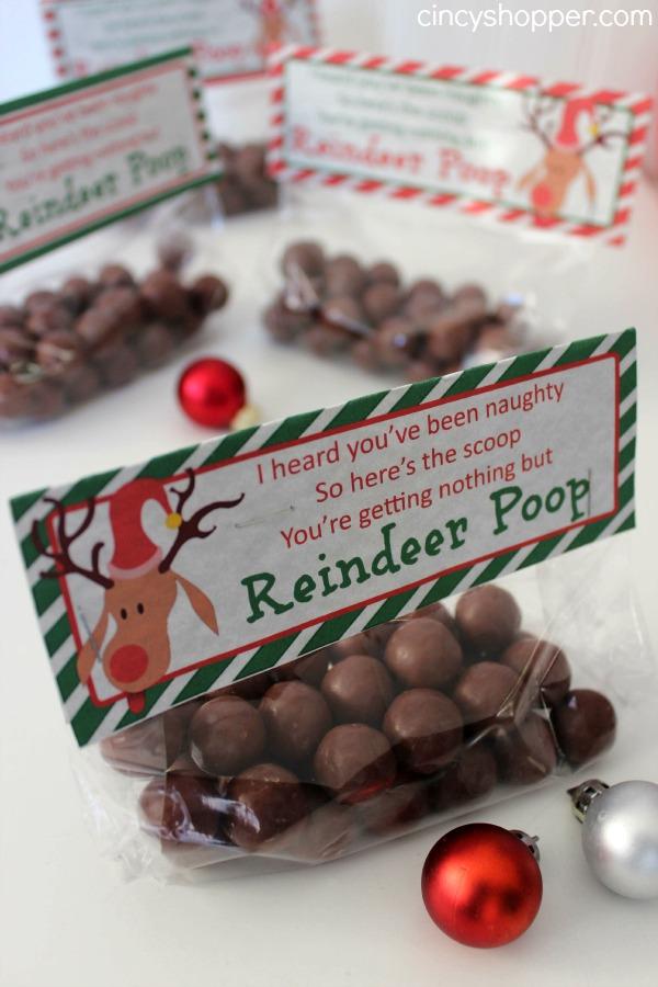 Christmas Crafts Reindeer Poop