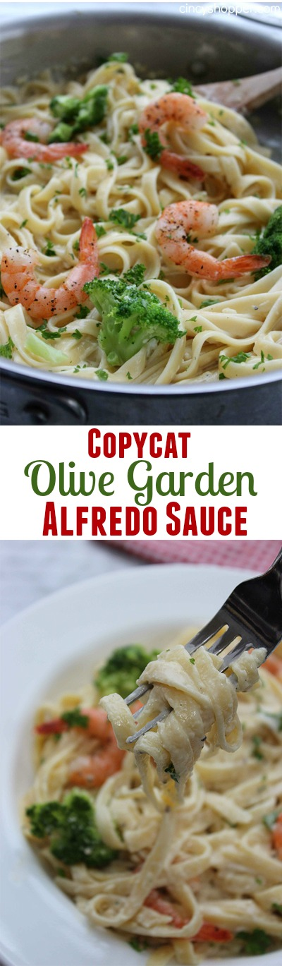CopyCat Olive Garden Alfredo Sauce- A rich and creamy sauce that is perfect with your favorite pasta. Save $$'s and make your favorites at home.