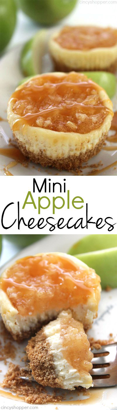 Mini Apple Cheesecakes - pack all the yummy flavors of an apple cheesecake in bite sized form