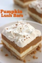Pumpkin Lush Bars 1