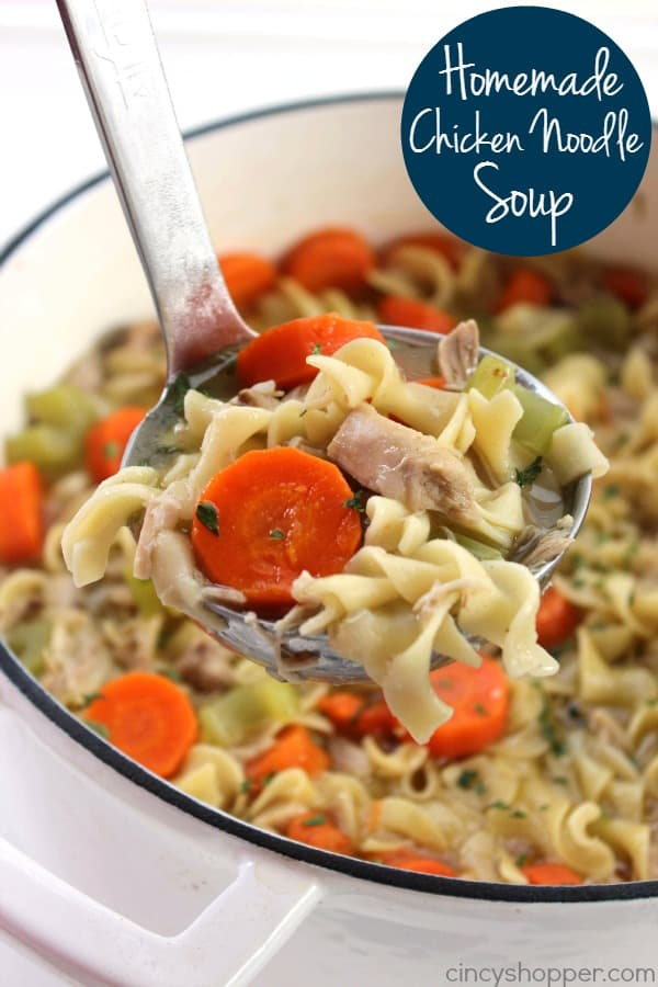 Homemade Chicken Noodle Soup 1