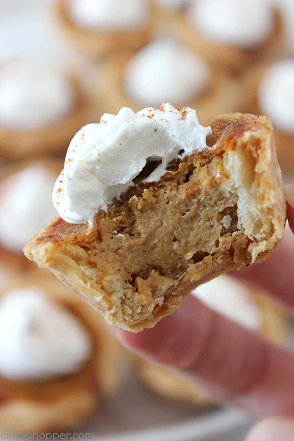 Mini Pumpkin Pies - a cute and easy Thanksgiving or Christmas dessert idea.