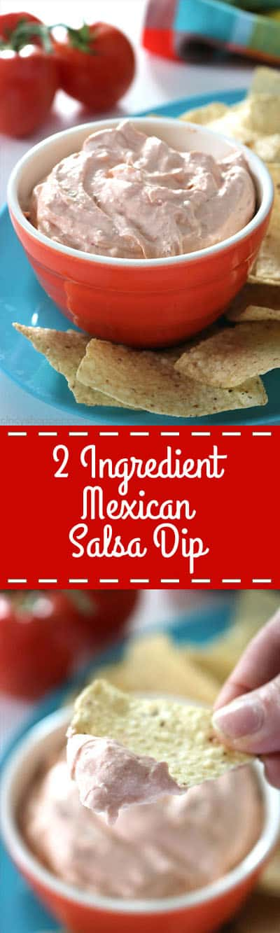 This 2 Ingredient Mexican Salsa Dip is so super simple to throw together for a last minute appetizer.