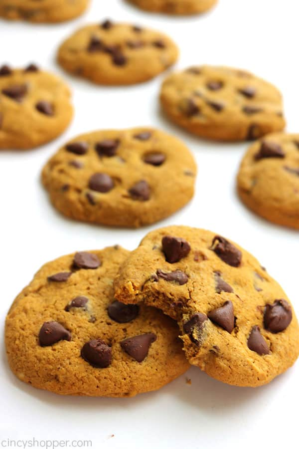 Chewy Pumpkin Chocolate Chip Cookies are the BEST! With NO cake like texture.