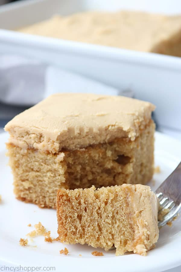 Peanut butter cake with fork