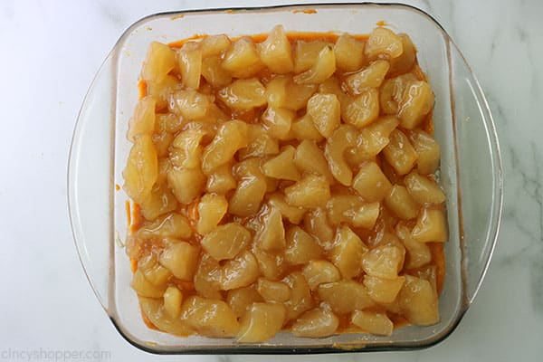 Diced apples on top of pudding layer.