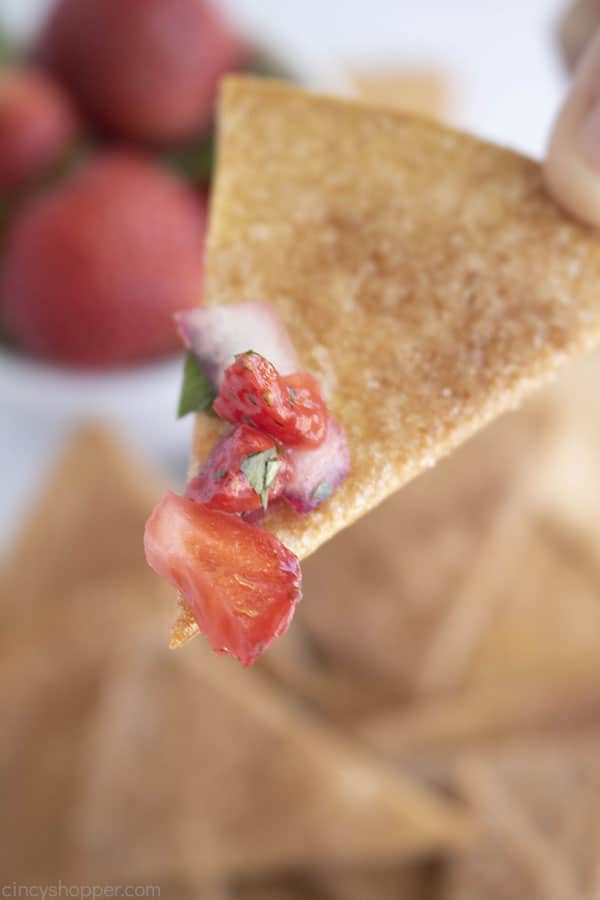 Fingers holding cinnamon tortilla chip with strawberry salsa