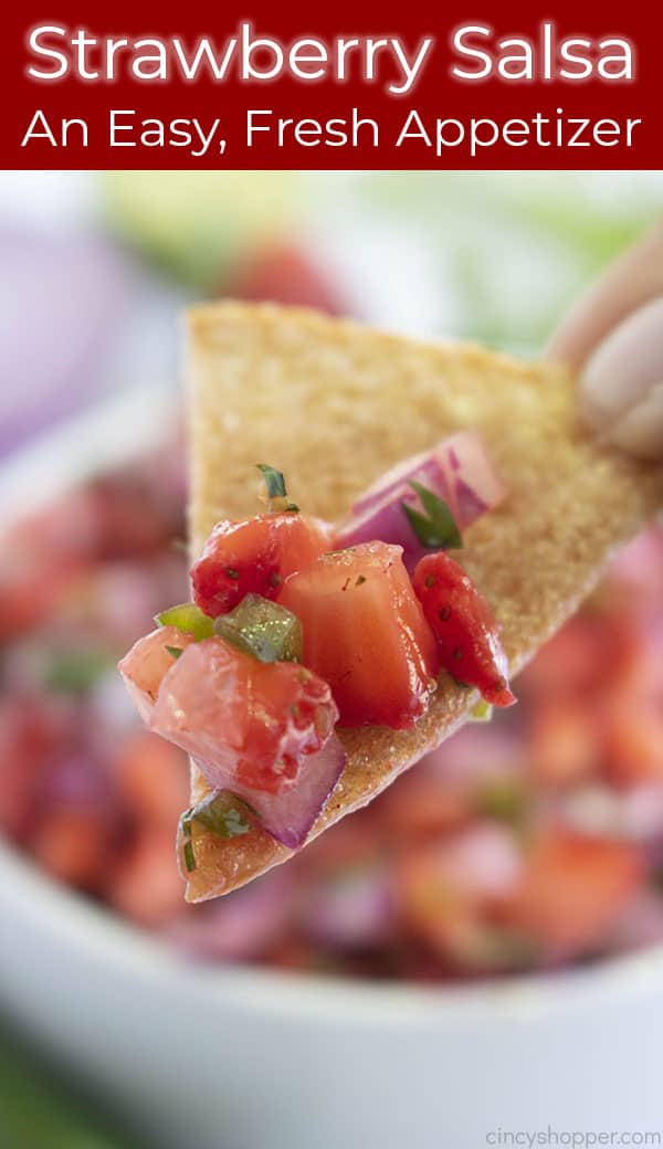 Long Pin, Homemade Salsa, Text on Image: Easy, Fresh Appetizer