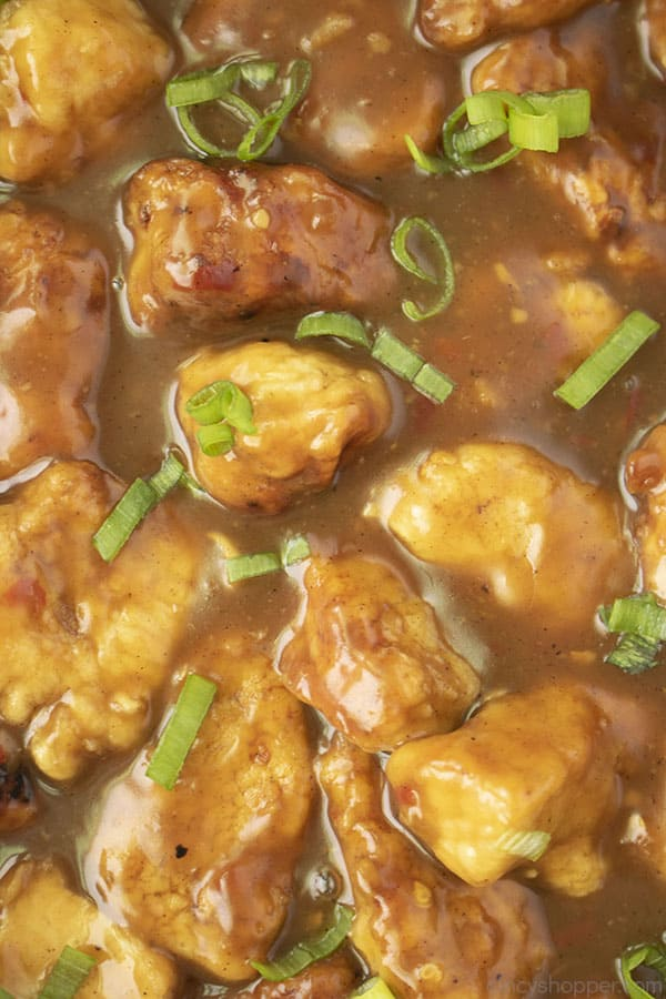 Closeup of chicken in sauce with green onions