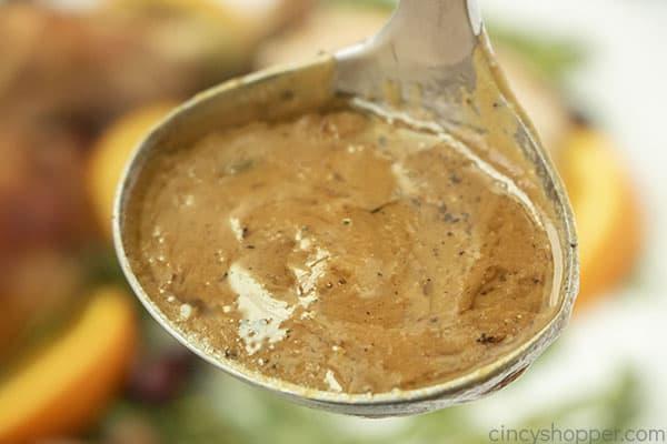 Turkey Gravy in a ladle