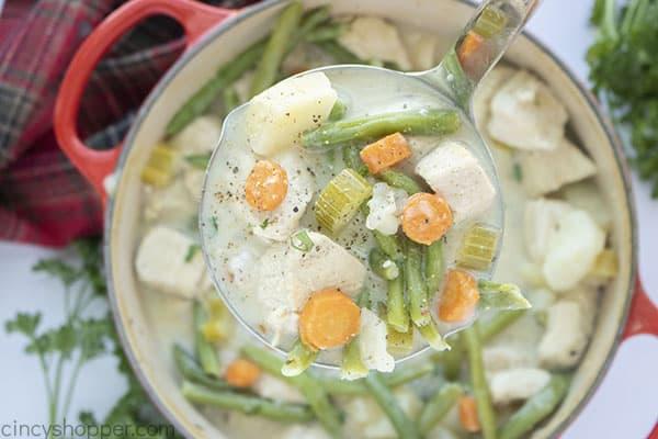 Chicken stew in a ladle