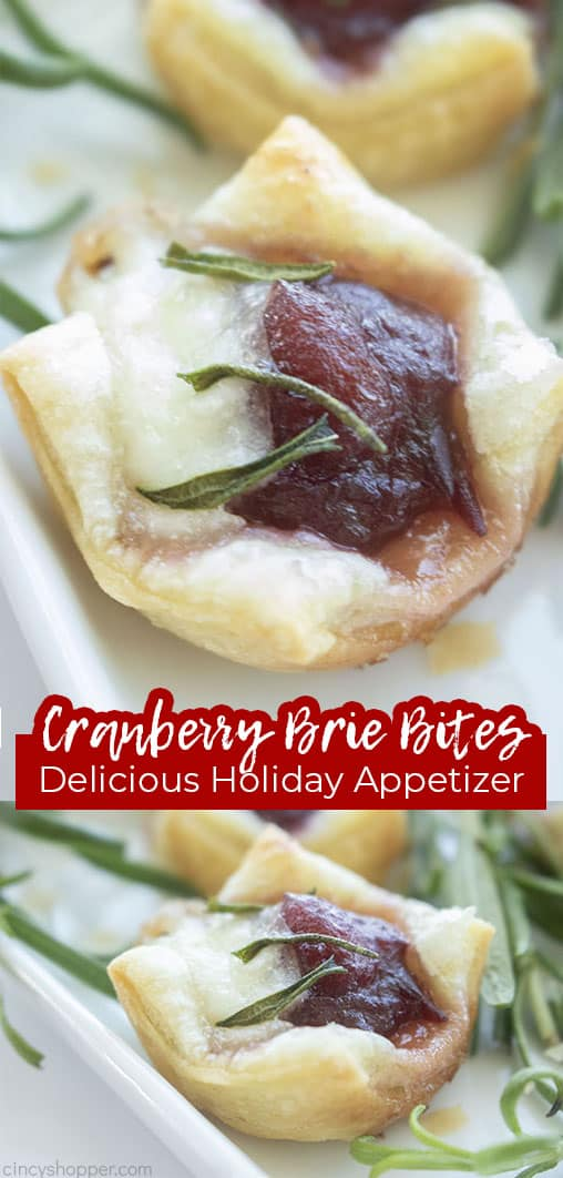 Long pin collage with text Cranberry Brie Bites Delicious Holiday Appetizer