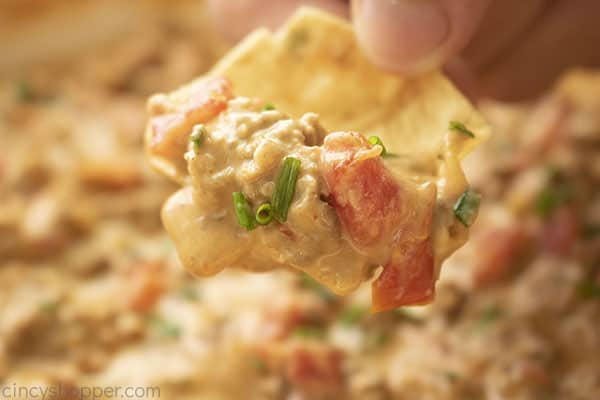 Closeup of Rotel Dip on a chip