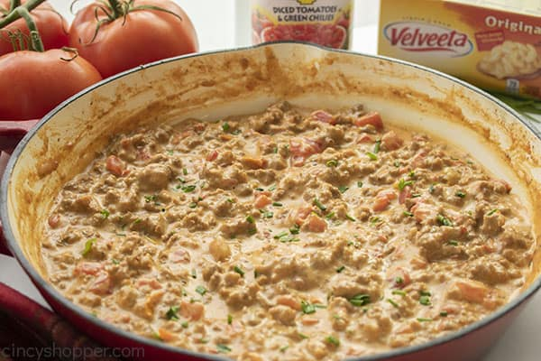 Warm Rotel Dip in a pan