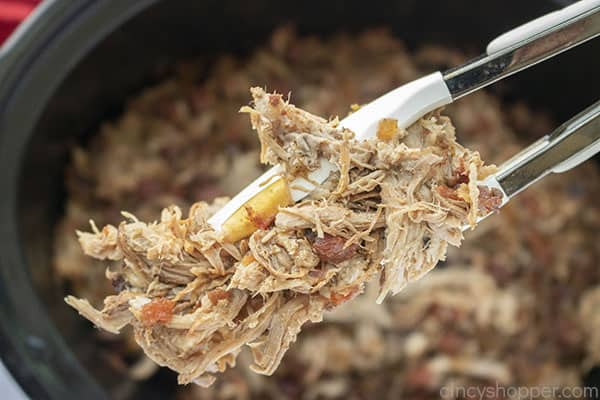 Shredded Pork Carnita
