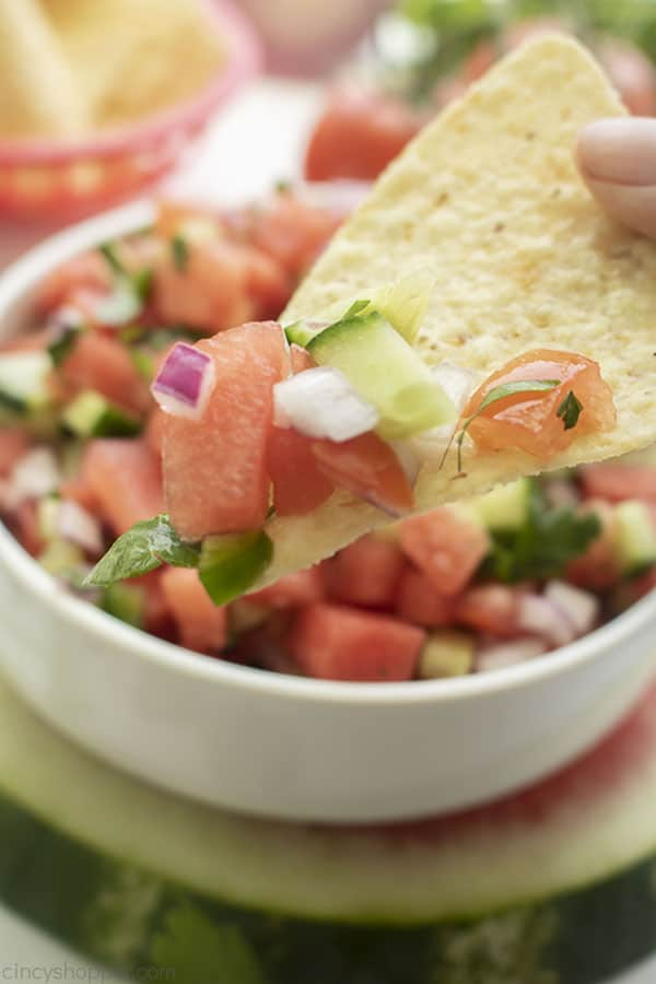 Tortilla chip with fresh fruit salsa