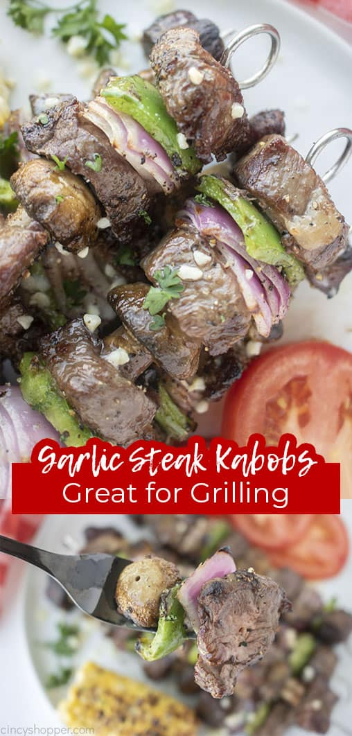 Long pin text Grilled Steak Kabobs Great for Grilling