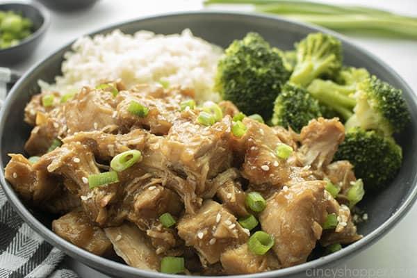 Dish with Teriyaki Chicken, rice and broccoli